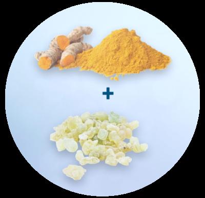 Relief Plus Ingredients (image)